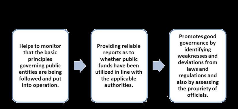 audit importance