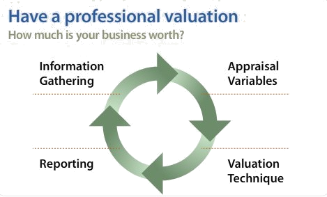 valuation professional services