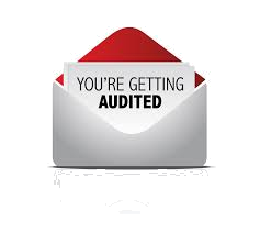 you are getting audited